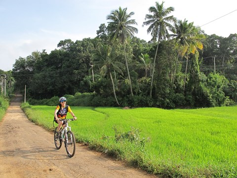 Cycle the Backroads of Sri Lanka