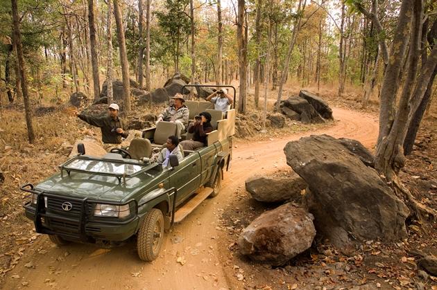 On Safari in India