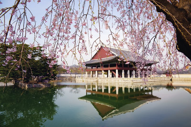 Top Ten Things to do in Korea