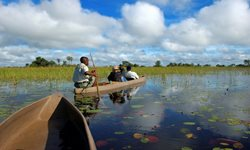 Top 5 Places to Visit in Botswana