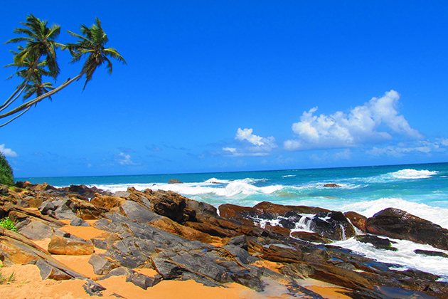 Traveller Review: Classic Sri Lanka