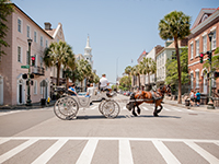 Experience the charm of the Deep South